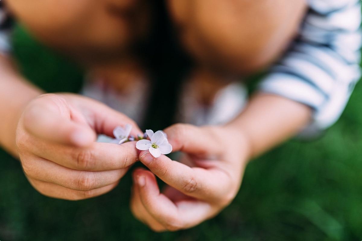 kleine Blüte in der Hand eines Mädchens